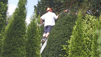 Garden and grounds maintenance in Mid Wales