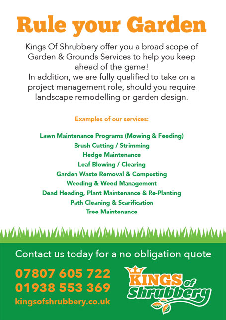 Kings of Shrubbery A5 flyer